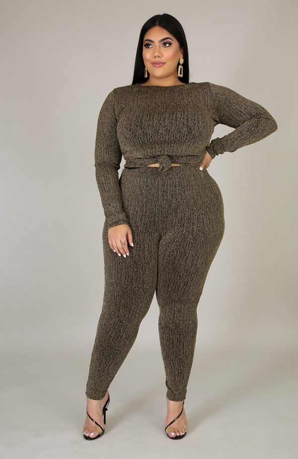 Plus Size Stretchy Pants Set Two Piece Set